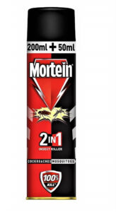 Mortein Dual All Insect Killer Spray - 250ml