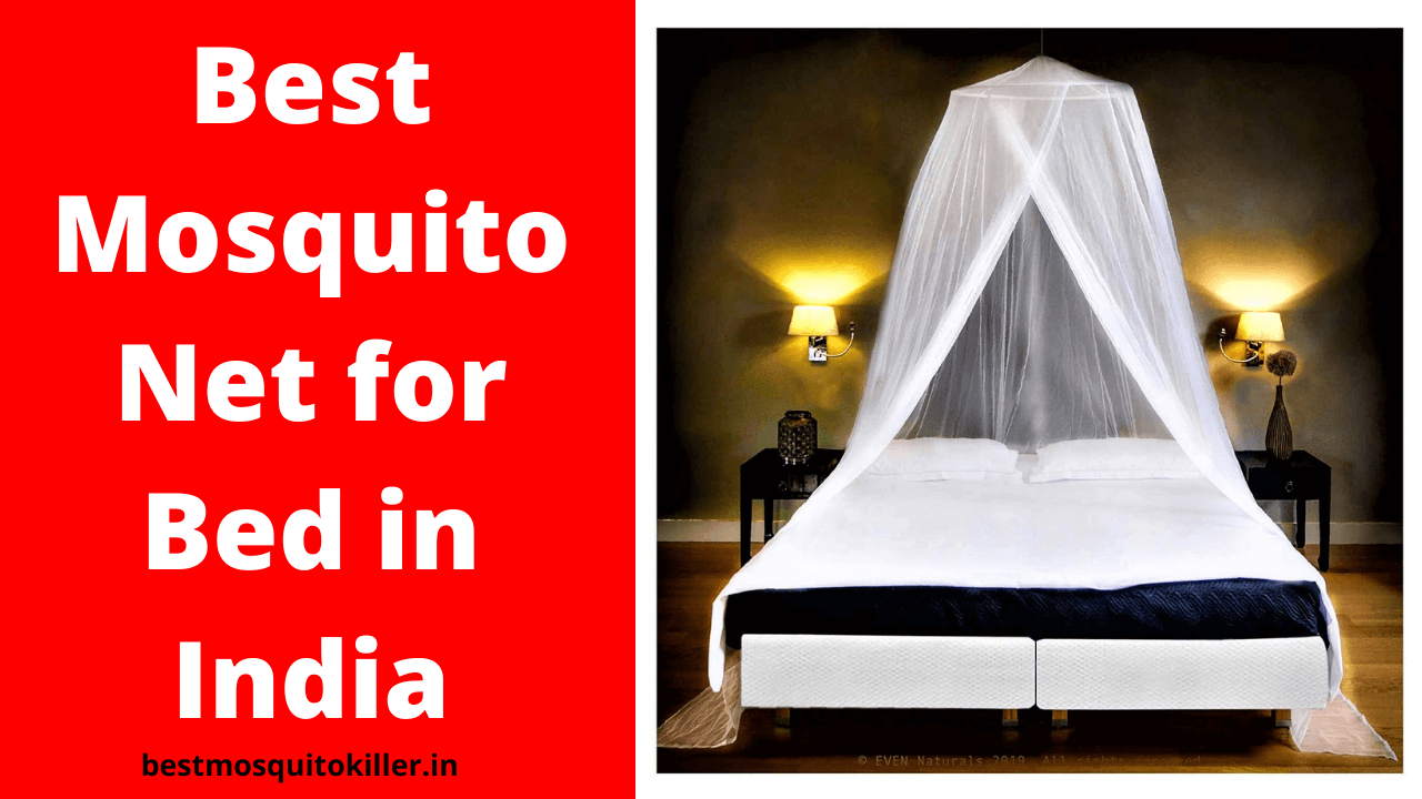 Best Mosquito Net for Bed in India